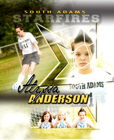 South Adams Girls Soccer Banners 2013