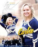 Norwell Basketball Cheer Banners {class of 2015}