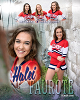 Bellmont Football Cheerleader Banners {class of 18}