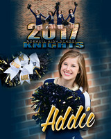 Norwell Cheerleading Banners {class of 2017}