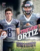 Bellmont Football Banners [class of 18]