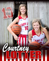 ACHS Girls Basketball Banners {class of 18}